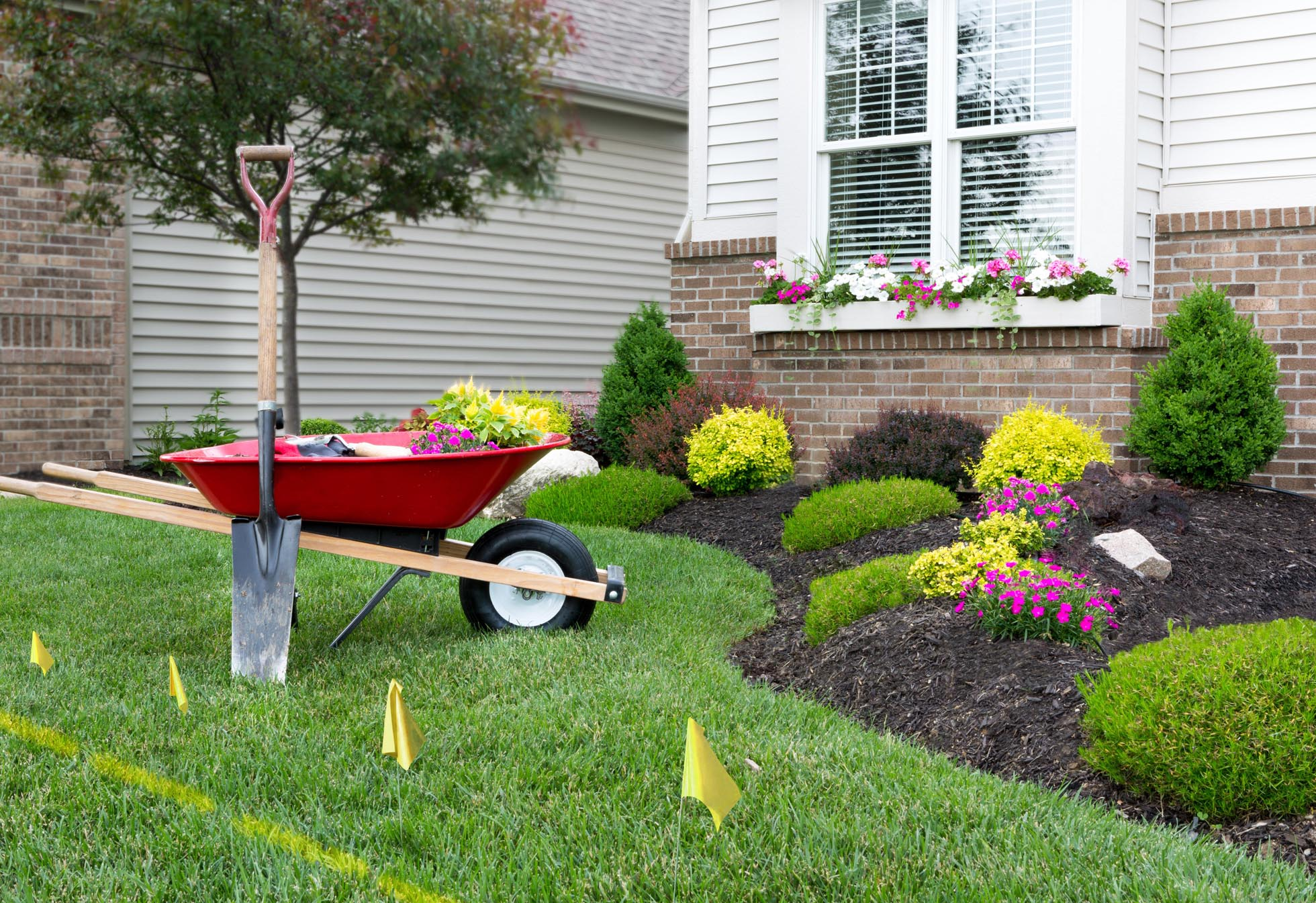 Hire The Best & Professional Lawn Care Specialist In NSW