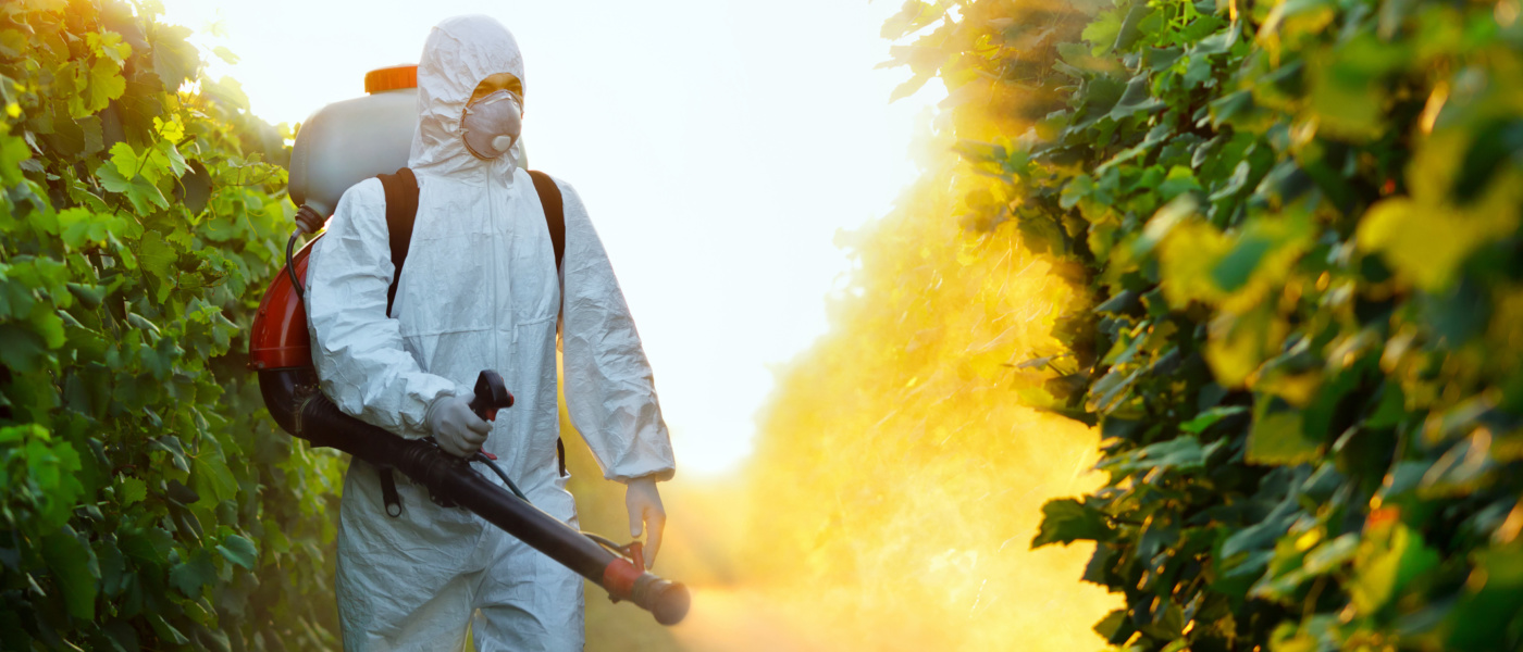 Make Your Home Safe By Eradicating Pests With The Pest Control Services