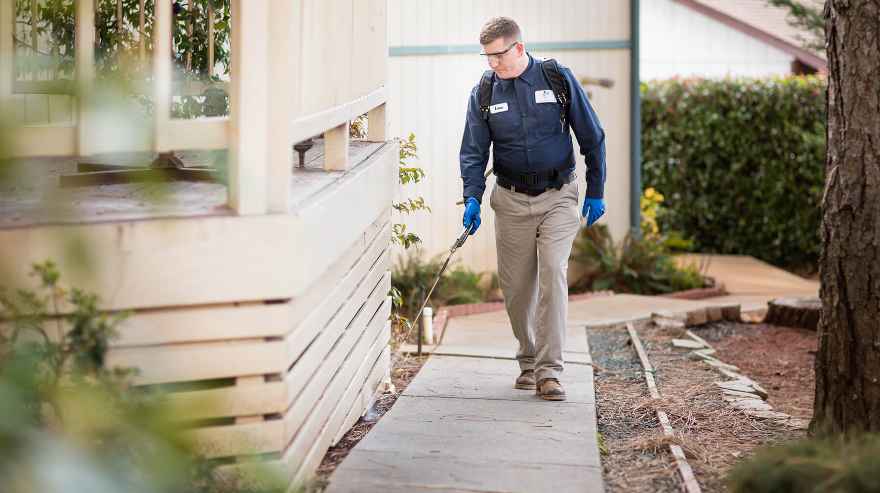 Opt For Finding The Right Gold Coast Pest Control Services